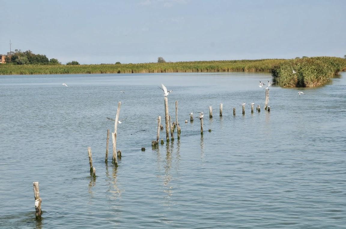 Le delta du Pô au fil de l'eau